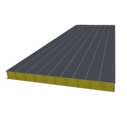 Сэндвич панель стеновая МП 100 RAL 7024/9003 0,5/0,5 мм, ширина 1200 мм